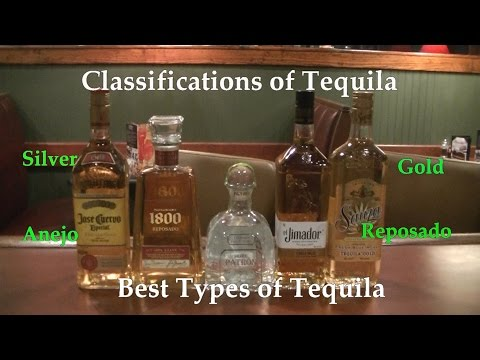 Classifications of Tequila  Best Types of Tequila  Difference Between Tequilas