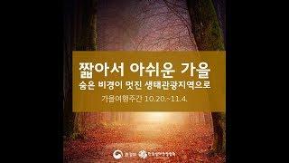 [카드뉴스] 짧아서 아쉬운 가을