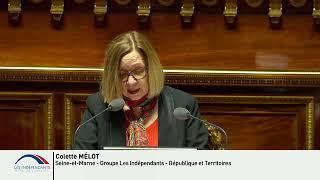 Colette MELOT : Débat sur la constitutionnalisation de l'IVG