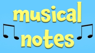 Musical Notes!  Learning About Music For Kids