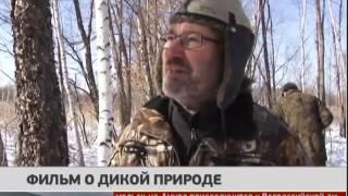 Фильм о дикой природе. Новости. 17/02/2017. GuberniaTV