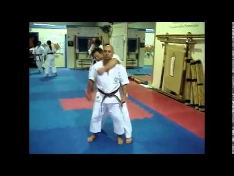 Karate and Koryu Uchinadi Kenpo Jutsu Comparison