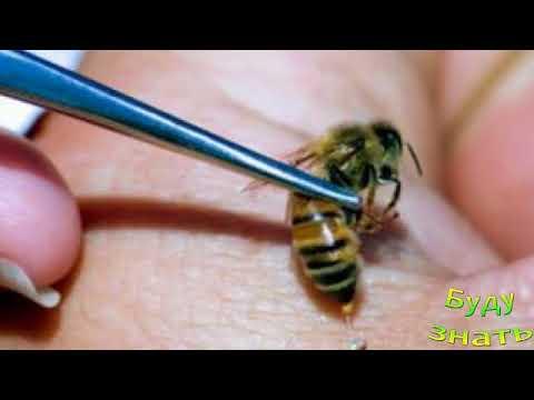 Как лечить инфекционный простатит