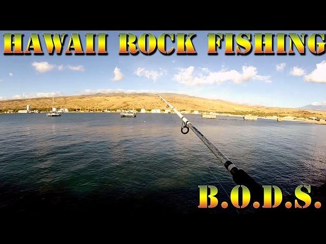 Rock-fishing-on-the-lsd