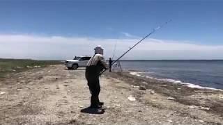 Рыбалка в азербайджане на каспийском море
