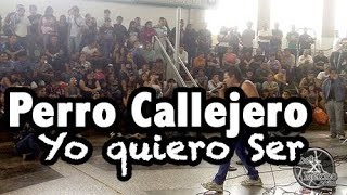 Perro Callejero - Yo quiero ser @ Metro San Lazaro 11abr13 www.rockxmexico.com