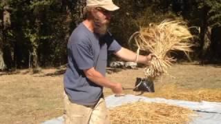 Klay Processing Barley Field to Grain