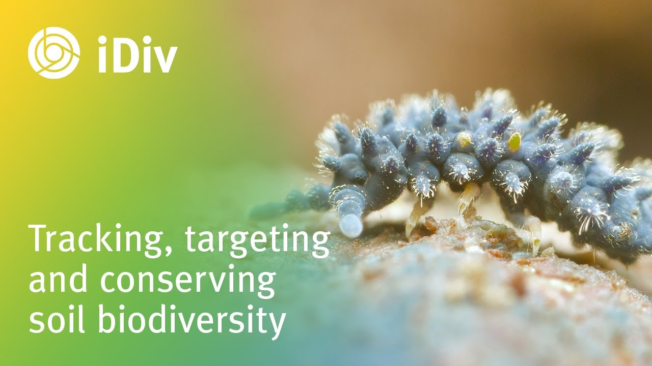 Tracking, targeting and conserving soil biodiversity