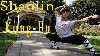 Shaolin Kung Fu Wushu Lian Huan Fist Training Tutorial - Martial Arts for Beginners