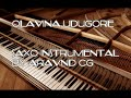 olavina udugore instrumental by aravind cg