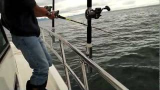 2011 Ocean Challenge - king salmon