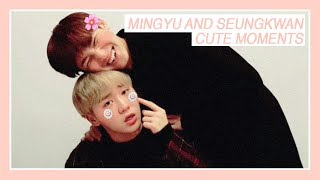 ♡Why You Should Ship: GYUBOO (Seungkwan X Mingyu)