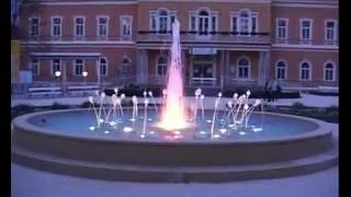 preview picture of video 'Anemonenbrunnen Bad Hall'