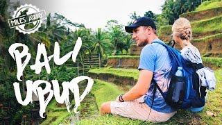 УБУД, Бали | Жилье, Рисовые террасы, Лес обезьян