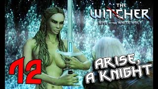 THE WITCHER. Part 12: Lady of the Lake, Berengar