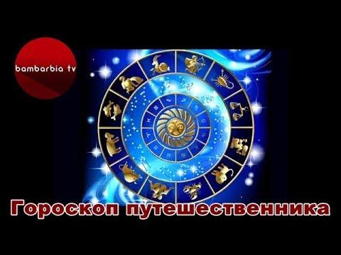 Гороскоп на 2017 год для женщины льва-лошади