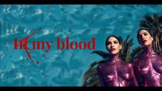 In My Blood   The Veronicas (Lyrics)