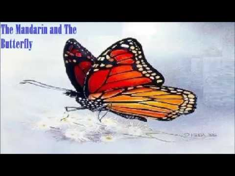The Mandarin And The Butterfly