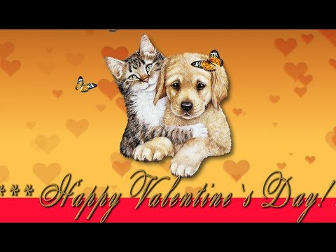 🎶💗 Happy Valentine`s Day ! Love You! 🎶💗4K Animation Greeting Cards