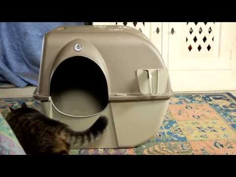 PULIGATTO -  Lettiera autopulente