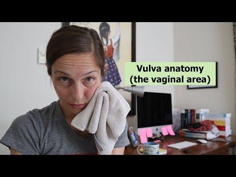 Din care un penis mic într- o stare calmă, Tratamentul rănilor pe penis