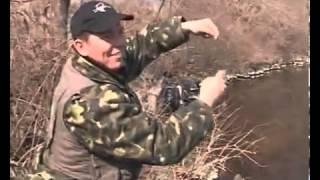 Ловля на резинку плотвы весной
