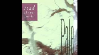 Toad The Wet Sprocket - Jam