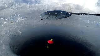 Ловля зимой с поплавком