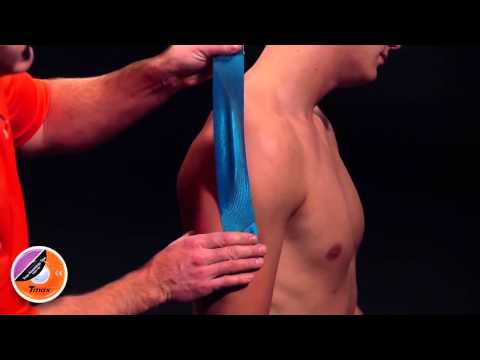 Боли в суставах мышцах костях