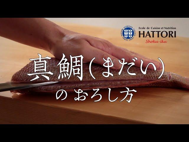 真鯛のおろし方
