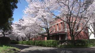 夏目漱石の小説「草枕」縁の地を訪れる