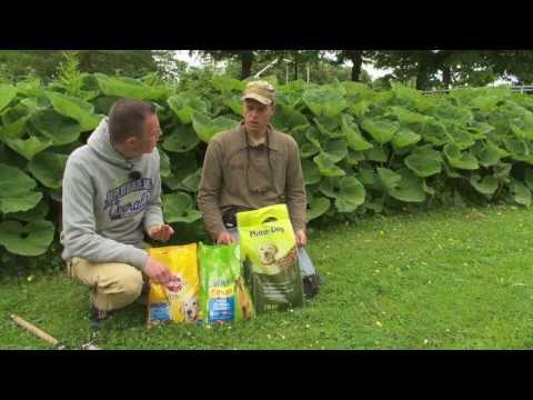 Visblad TV  - Drijvend karpervissen met hondenbrokken