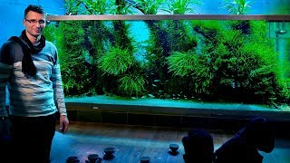 THE WORLDS MOST FAMOUS PLANTED TANK - TAKASHI AMANOS HOME AQUARIUM - JAPAN VLOG PART 2