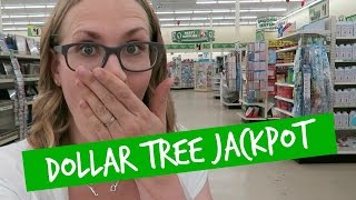HUGE DOLLAR TREE Shop with Me! 💚 Organization Jackpot!!
