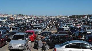 Цены на авто рынке Бреста.  Выбор авто