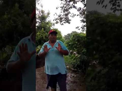 Video: Inundaciones: un vecino de Salvador Mazza pide ayuda a funcionarios