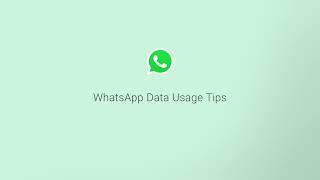 WhatsApp auto download media settings