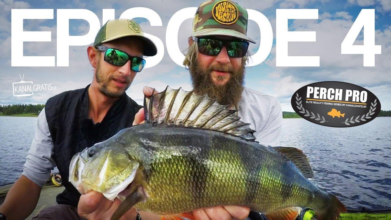 PERCH PRO 5 - Episode 4 - The Topwater War