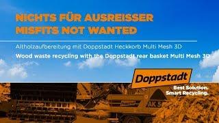 Altholzaufbereitung mit Doppstadt Heckkorb - Multi Mesh 3D