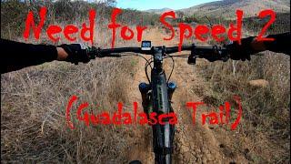 Shredding Gudalasca Trail DH
