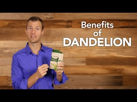 Video Benefits of Dandelion