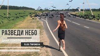 🔥РАЗВЕДИ НЕБО - Дана Соколова (кавер)    Алиса Трифонова