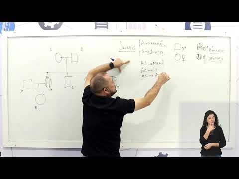 Aula 09 | Primeira Lei de Mendel - Parte 03 de 03 - Exercícios Resolvidos - Biologia