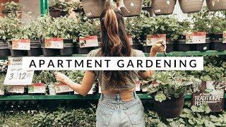 Top 5 Beginner Tips For Apartment Gardeners | Aja Dang + Epic Gardening