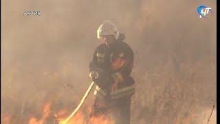 За полгода 2018 года на территории Новгородской области произошел 521 пожар