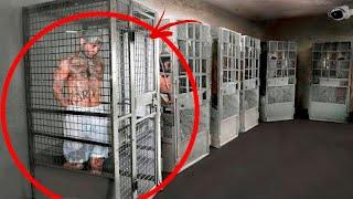 Żadnemu Człowiekowi Nie Udało Się Uciec Z Tego Więzienia