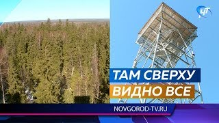 Скоро для посещения откроется 25-метровая вышка на самой высокой точке Новгородской области