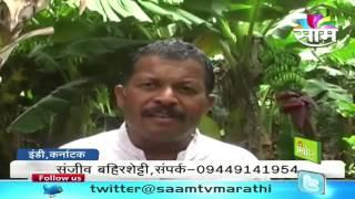 Sanjiv Bahirshetty's Zero Budget Banana Farming Success Story.