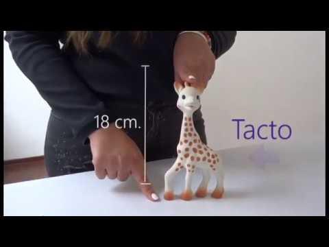 Sophie la Girafe Juguete Mordedor de Caucho Natural