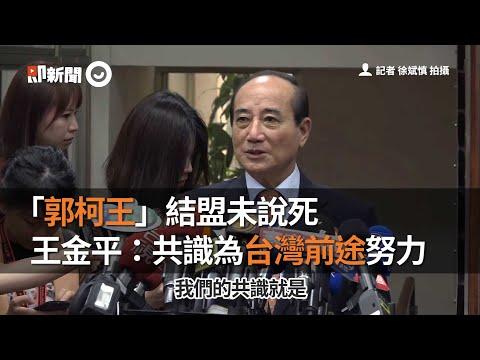 「郭柯王」結盟未說死 王金平:共識為台灣前途努力